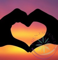 Szívcsepp- Éden virágesszencia keverék